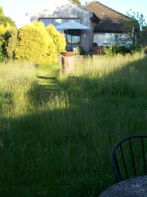 An informal garden, views back to the house from the long grass meadow.