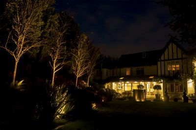 The night Time garden