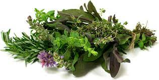 Mixed Culinary Herbs
