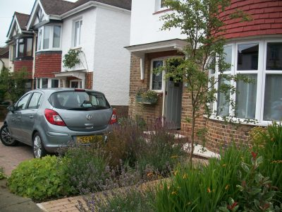 a front garden in Hove Sussex, that has good planting and a tree and a space for a car.