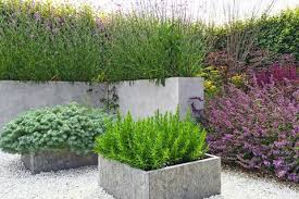 dramatic planted containers