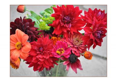 home grown garden flowers make a splash as flower arrangements.