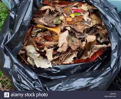 Bag up raked leaves.