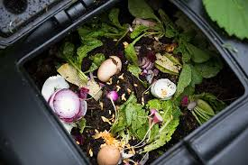 Putting food waste into a vermin prof compost bin