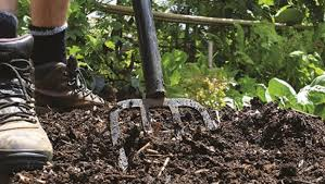 Digging compost into the ground