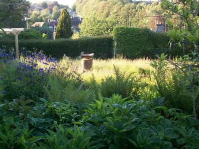 Planting beds by the house give way to the informal lower garden