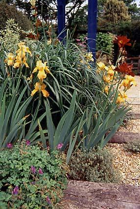 Varied planting