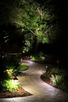 Lighting a path