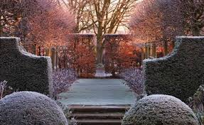 Evergreens make a winter garden.