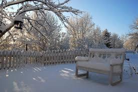 Winter Garden Magic