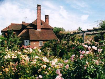 Walled Garden Steyning