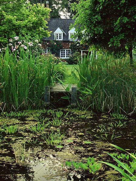 About Arcadia Garden Design | Working in Brighton & Sussex on Arcadia Backyard Designs id=50419