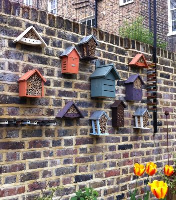 a group of 'Bug Hotels'