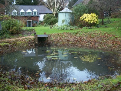 autumn pond maintenance